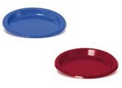 25 צלחות פלסטיק צבעוניות גדולות